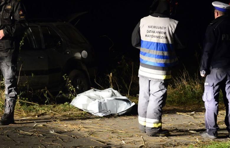 В Польше автомобиль врезался в группу пьяных украинцев, есть жертвы